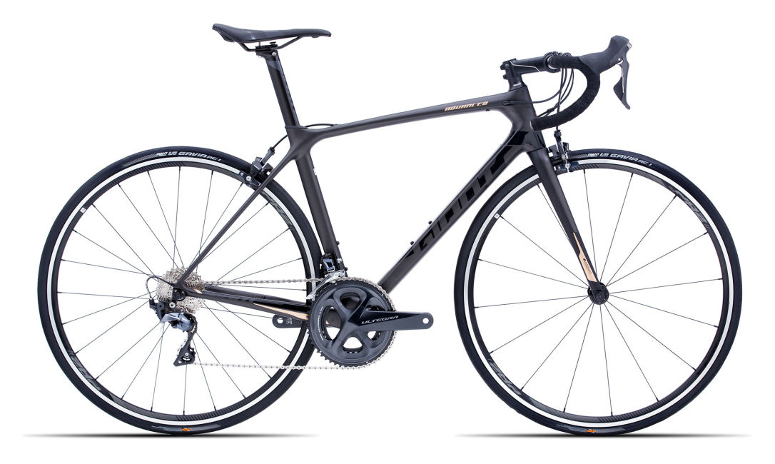 Rent a carbon road bike/racing bicycle